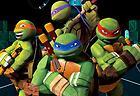 Teenage Mutant Ninja Turtles: Ninja Training