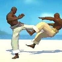 Capoeira Fighter