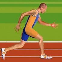 ragdoll-runners