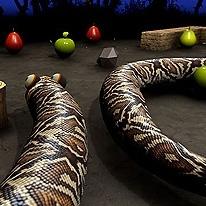 nova-snake-3d